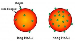 HbA1c - geglycosyleerd hemoglobine