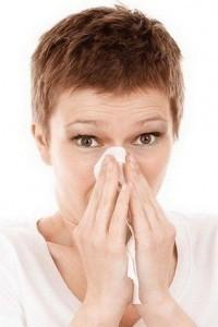 immuunsysteem - hooikoorts - niezen