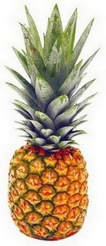 ananas in sportdieet - afbeelding 2