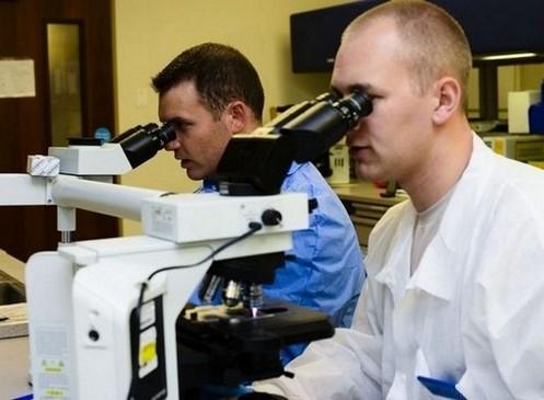 langdurige diarree - onderzoek dunnedarmbiopt onder de microscoop