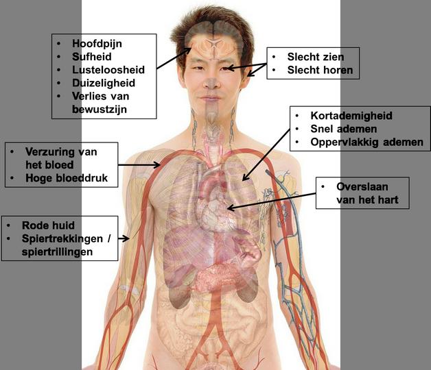 hypercapnie - symptomen