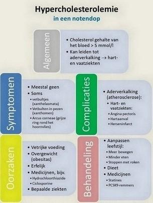 hypercholesterolemie - oorzaken - symptomen - complicaties - behandeling