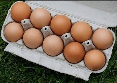 eieren horen uiteraard ook thuis in het eiwitdieet