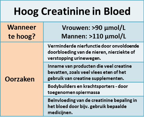 hoog creatinine gehalte in het bloed - waarden en oorzaken