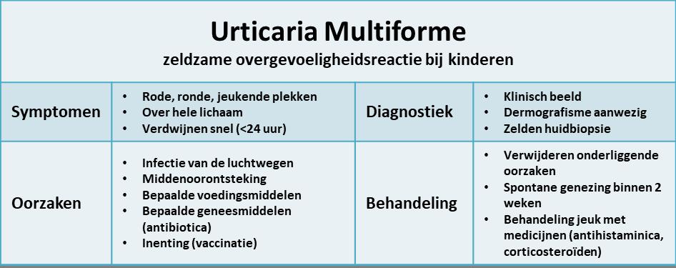 urticaria multiforme - samenvatting
