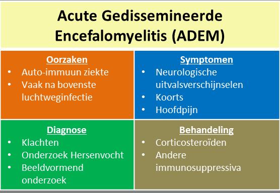 acute gedissemineerde encefalomyelitis - samenvatting